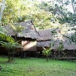 Bungalows at Maniti Eco-Lodge