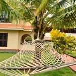 Garden view, hammock