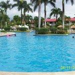 Great clean pool