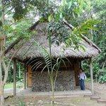 Photo of Madidi Jungle Ecolodge