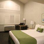Ocean Pacific Lodge rooms