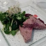 Wildterrine