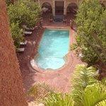 la piscine entourée de citronniers