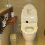 japanese style toilet