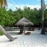 plage et transats privatifs devant les bungalows