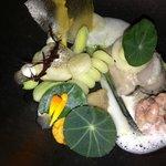 zeeuwse oester