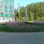 Клумба тюльпанов на территории отеля