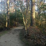 One of the trails on the property; this one leads to Sunrise Point.
