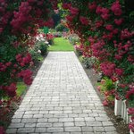 One of many paths to Garden