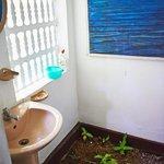 Ванная комната с клумбой