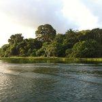 Nanciyaga Laguna