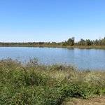 Red Slough Wildlife Management Area - Ouachita National Forest