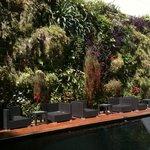 Jardim vertical junto à piscina