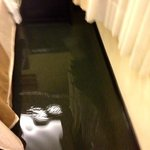 Flood in the room