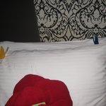 Cute butterflies on our pillows!