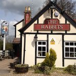 The Rabbits Entrance