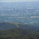 Adelaide from Mount Lofty
