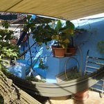 the rooftop hammocks