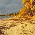 Vue de la plage face au restaurant - COUCHER DE SOLEIL Baie de KUTO