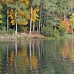 The lake with fall color