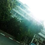 Photo de Jacaranda Hotel