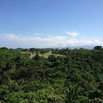 Tropical forest view from room ...you see that Golf course..beauty