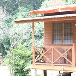 Our chalet which the roof became a playground for wild monkeys