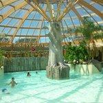 piscine aquatique excellent