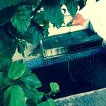 casa do patio - la fontaine