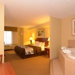 King Jacuzzi Suite with 40 inch Flat Screen TV