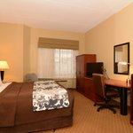 King Room with 32 inch Flat Screen TV