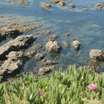Crystal Clear Water at Lizard Point