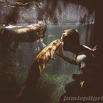 Friendly, playful beavers