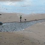 The beach with the tide out