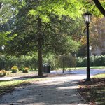 Walkway thru campus