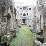 Coliseum Lower Level View