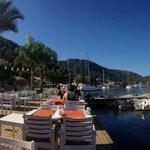 Breakfast by the marina