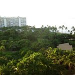 Balcony view of a piece of paradise