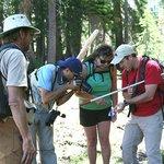 Examining butterflies near Barker Pass