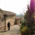 Camino a San Damiano
