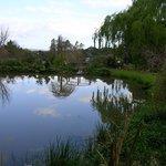 Willowleigh B&B's beautiful garden