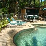 Saltwater Pool, Spa, BBQ and Bar
