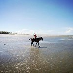 Go horseback riding right on the beach