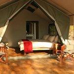 South Camp safari tent