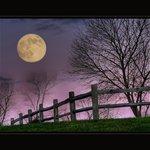 November Moonrise at The Inn at Cedar Falls