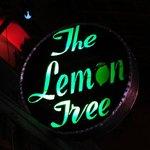 Lemon Treeの写真