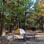Campsite D11 NOV 2013
