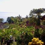 vue depuis la terrasse de notre chambre à Titi Sedana