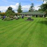 A well-kept lawn