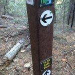 marker post 11